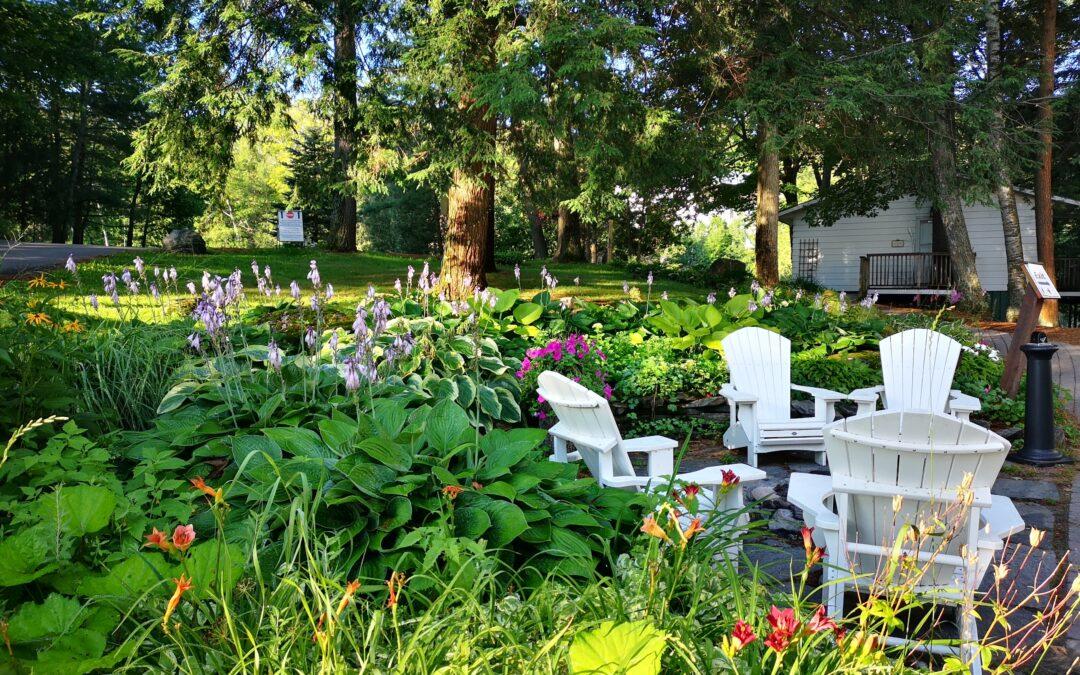 Hvide havemøbler skinner af sommer
